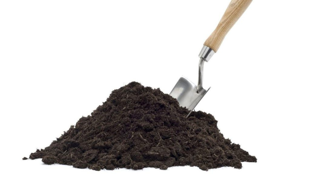 A Powerful New Antibiotic Discovered In Dirt